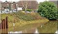 J3371 : Riverbank, Annadale, Belfast by Albert Bridge