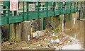 J3470 : Debris, River Lagan, Stranmillis, Belfast (December 2013) by Albert Bridge