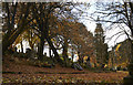 NS4664 : Woodside Cemetery Plot 30 by david cameron photographer