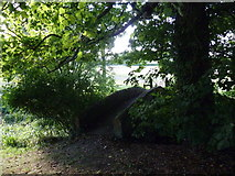 ST5906 : Bridge from the churchyard by Basher Eyre