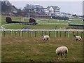 NY9162 : Hexham Racecourse by Oliver Dixon
