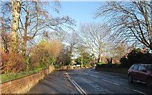 SE3321 : College Grove Road - viewed from Westfield Road by Betty Longbottom