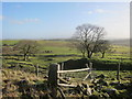 SK0464 : Moorland scenery at Merril Grove Farm by Dr Duncan Pepper