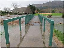 J3731 : Flooding in  Island Park, Newcastle by Eric Jones