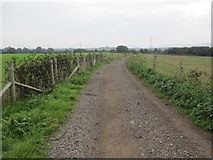 TQ1913 : Route to Stretham Manor by Peter Holmes