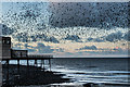 SN5881 : Starlings over Aberystwyth Pier by Ian Capper