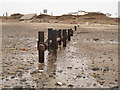 TA4115 : Drainage outfall at Kilnsea by Stephen Craven