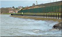 J3979 : Rising tide, Holywood by Albert Bridge