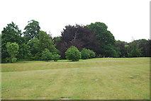 TG1908 : Earlham Park by N Chadwick