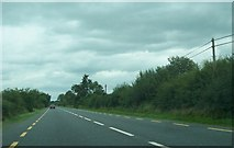 N3232 : The N52 just south of the Offaly/Westmeath county border by Eric Jones