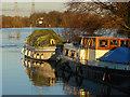 TQ0566 : River boats, Chertsey by Alan Hunt