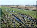 TQ6774 : Milton Firing Range and Eastcourt Marshes by Marathon