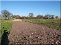 TQ4277 : Access track on Woolwich Common  by Stephen Craven
