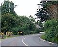 N5659 : Dangerous bend on the N52 at Williamstown by Eric Jones