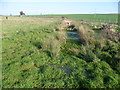 TR3159 : View of a drainage ditch from the Stour Valley Walk by Marathon