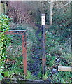 ST1378 : £75 fine for dog fouling in Fairwater, Cardiff by Jaggery