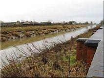 TF4509 : River Nene, Wisbech by Alex McGregor