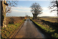 TF0352 : Old Lane by Richard Croft