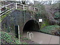 SO9969 : Tardebigge Tunnel - north portal by Chris Allen