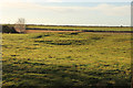 TF0452 : Brauncewell Home Close by Richard Croft