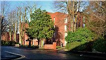 J3271 : Nos 36-38 Windsor Park, Belfast - 2014 (1) by Albert Bridge