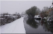 SO8171 : The Staffordshire & Worcestershire Canal in winter, Stourport-on-Severn by P L Chadwick