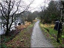 H5776 : Path, Loughmacrory by Kenneth  Allen