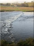 SE0063 : Stepping stones, Linton by Derek Harper