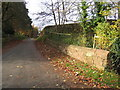 SJ4162 : The road down to Eccleston Ferry, a stone wall and a bench mark by John S Turner