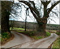 ST4592 : Fork in the road, Llanvair Discoed by Jaggery