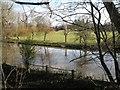 SP2965 : River Avon by Emscote Gardens, Warwick 2014, January 23, 12:50 by Robin Stott