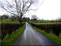 H5070 : Dryarch Road, Donaghanie by Kenneth  Allen