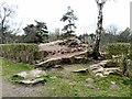SD4861 : Williamson Park by Gerald England
