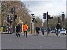 TQ2879 : Pegasus crossing, Constitution Hill by Oliver Dixon
