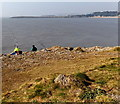 ST1166 : Watching and waiting near Nell's Point, Barry Island by Jaggery