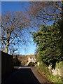 ST5577 : Grove Road, Coombe Dingle by Derek Harper