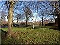 ST5679 : Trees and grass by Avonmouth Way, Henbury by Derek Harper