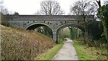 SK1750 : Bridge across the track, now the Tissington Trail by Chris Morgan