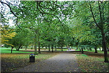 TQ3187 : Capital Ring, Finsbury Park by N Chadwick