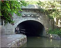 ST7565 : Bridge, Sydney Gardens, Bath by Stephen Richards