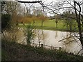 SP2965 : River Avon by Emscote Gardens, Warwick 2014, January 28, 12:31 by Robin Stott