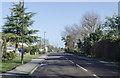 TQ6445 : Five Oak Green Road (B2017) by Julian P Guffogg