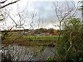 NZ2743 : View across the river by Robert Graham