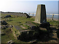 NY7467 : Trig point at Winshields by Trevor Littlewood