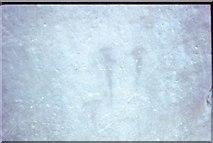 SU1242 : Dagger carvings at Stonehenge by David Smith