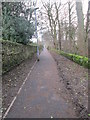 SE0636 : Footpath - from The Dell by Betty Longbottom