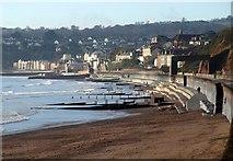 SX9777 : Dawlish from the coast path by Derek Harper