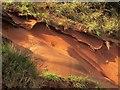 SX9676 : Sandstone, Lea Mount by Derek Harper
