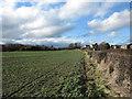 NZ1928 : Field on south side of Greenfields Lane by Trevor Littlewood