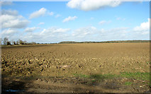 TM3984 : Fields by Brook Farm by Evelyn Simak